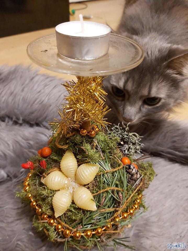Kur nu bez galvenā inspektora... Autors: The Diāna Ziemassvētku svečturis paša spēkiem
