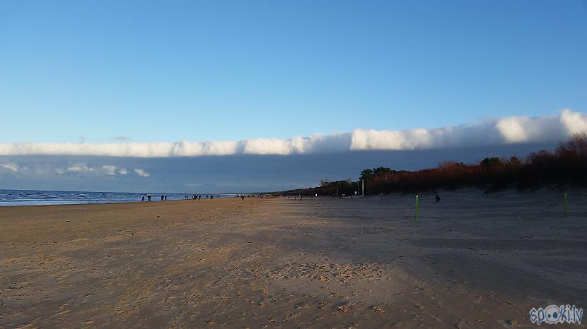 Daži dabas foto Autors: pyrathe Ar metāla detektoru pa pludmali 2020 (ziemas (ne)sezona)
