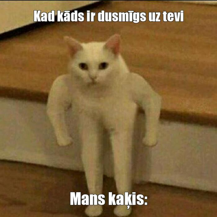 Autors: DatijsDatijs Memes
