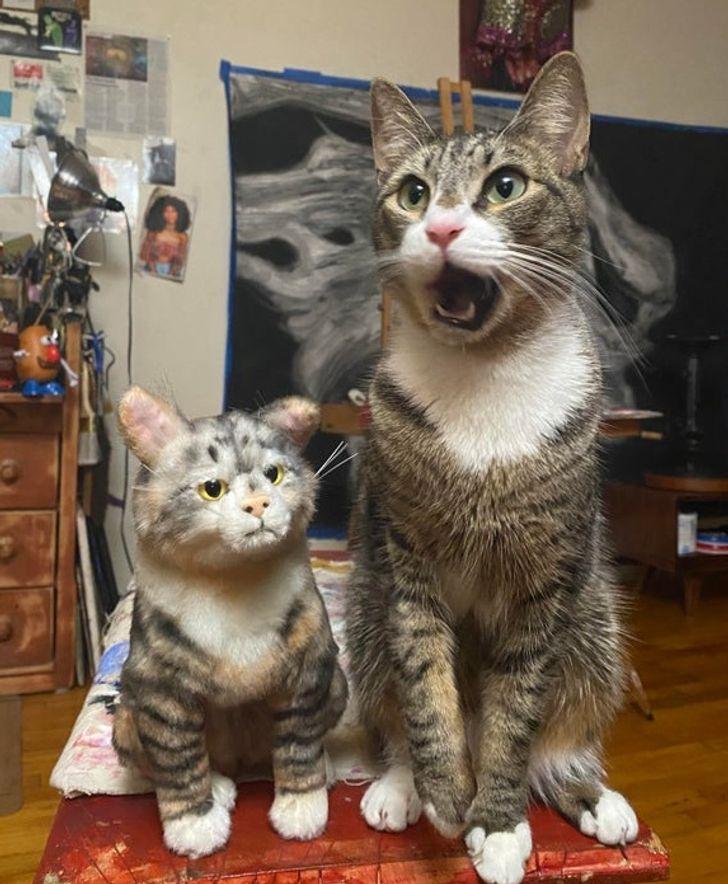 Sascaronutums par dubultnieka... Autors: Lestets 26 slinki kaķi, kuru īstā vieta būtu uz skatuves