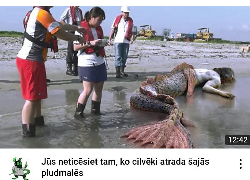 Autors: Zibenzellis69 Jūs neticēsiet tam, ko cilvēki atrada šajās pludmalēs