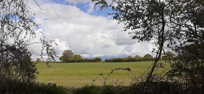 Autors: Griffith 5/5/21 Pavasaris lauku takās pie Malvern, UK.